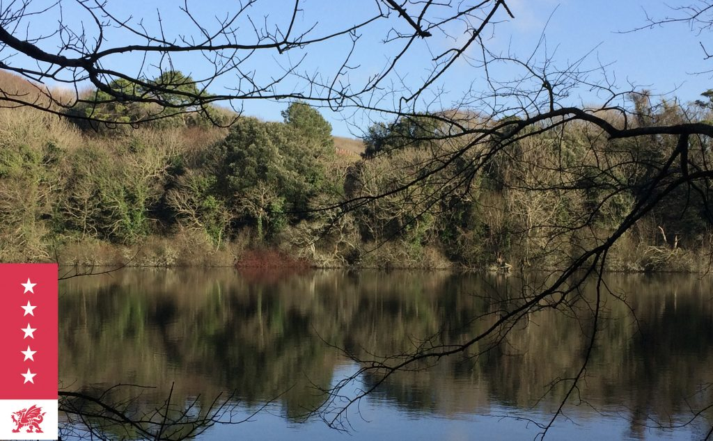 Bosherston Lily Ponds circular walks in Pembrokeshire